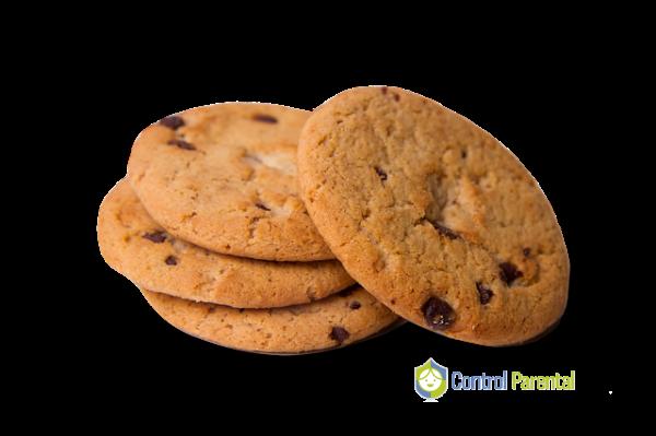Cuando visitamos un sitio por segunda vez esa cookie o almacenamiento temporal se vuelve a enviar al servidor para que nos identifiquen y sepan nuestros datos