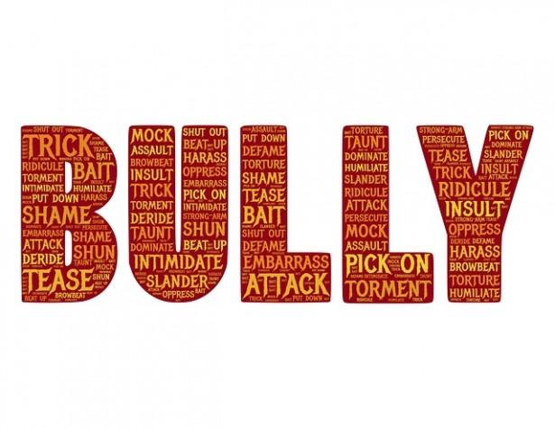 bully-655660_640
